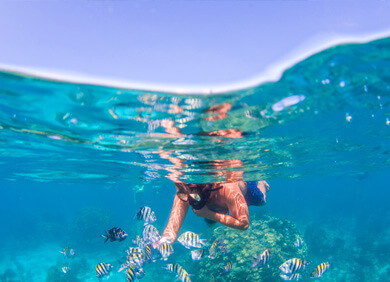 Snorkel the chrystal clear waters